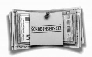 Schadenersatzansprüche Geschäftsführer Minderheitsgesellschafter
