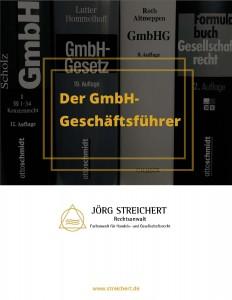 Der Geschäftsführer Einer Gmbh Rechtsanwalt Jörg Streichert