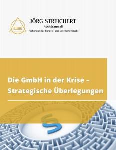 Die GmbH in der Krise - Strategische Überlegungen